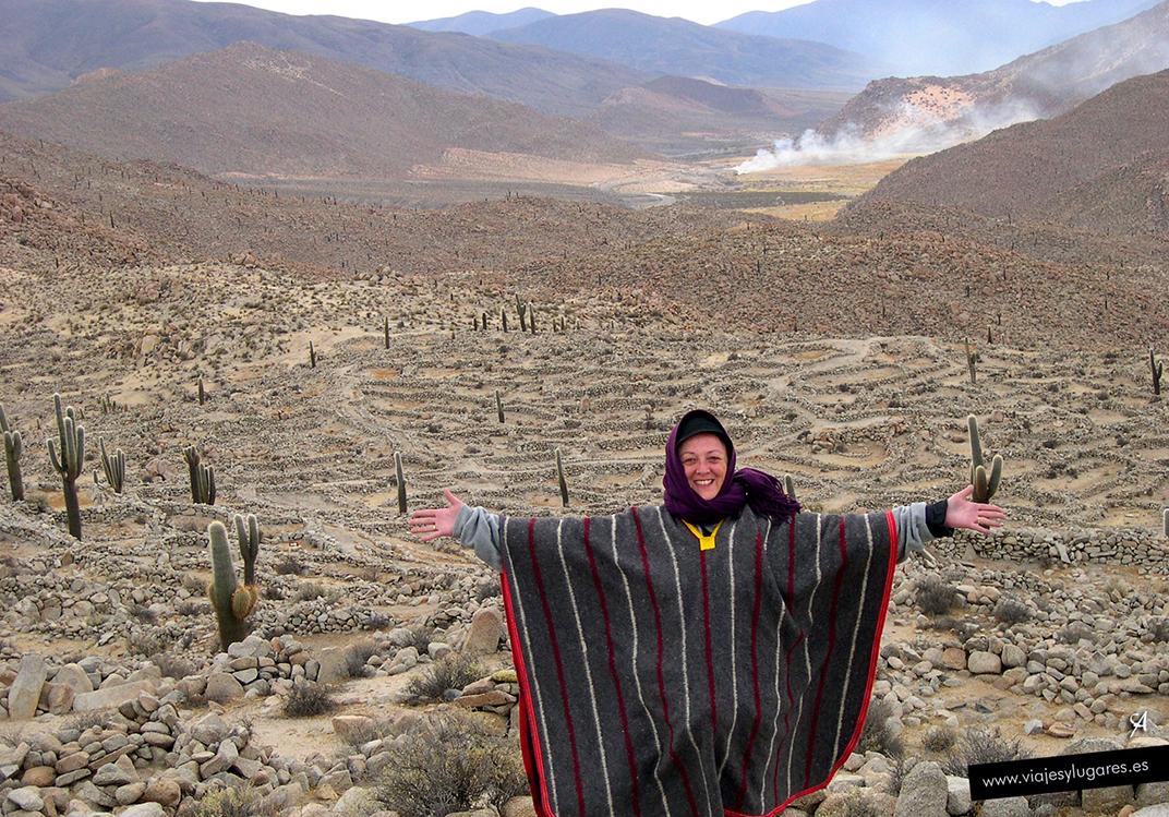 Los Andes y la Puna salteña