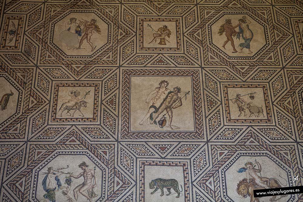 mosaico de Dionisos. Museo Romano Germánico