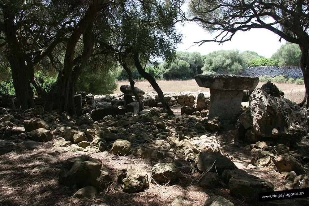 Torrellafuda en Menorca