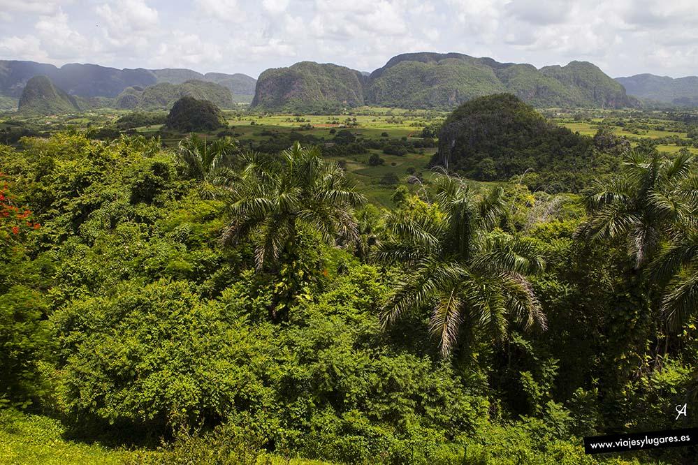 Paseando por el Valle de Viñales. Cuba