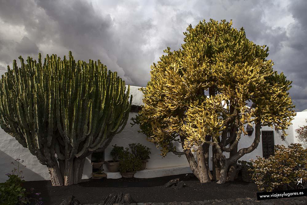 Casa del Volcán de César Manrique en Tahíche, Lanzarote