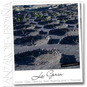 Viñas en el valle de La Geria, Lanzarote