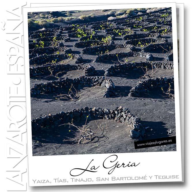 Campos de vid en el valle de La Geria, Lanzarote