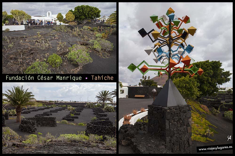 Casa del Volcán. Fundación César Manrique