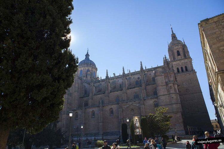 Catedral y Plaza de Anaya. Salamanca