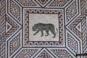 Tigre en el mosaico de dionisos
