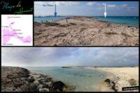 Ses Illetes y Playa de Llevant, Formentera